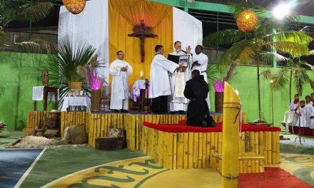 Profesiones solemnes en España y Brasil