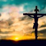 11. Hacia la santidad de vida