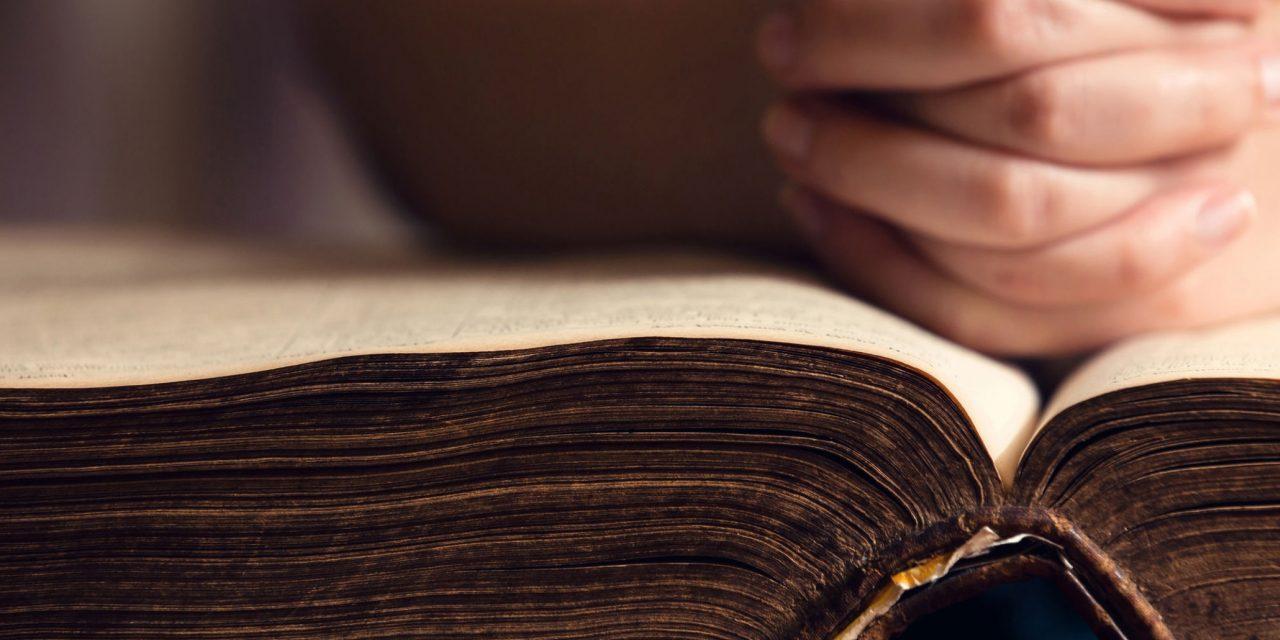 Los jóvenes y la Palabra de Dios: propuestas para el camino