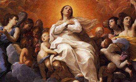 La Asunción de la Virgen María y san Agustín
