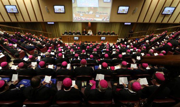 """El Cardenal Lacunza, sobre el Sínodo: """"Debe haber encuentro entre la Iglesia y los jóvenes"""""""